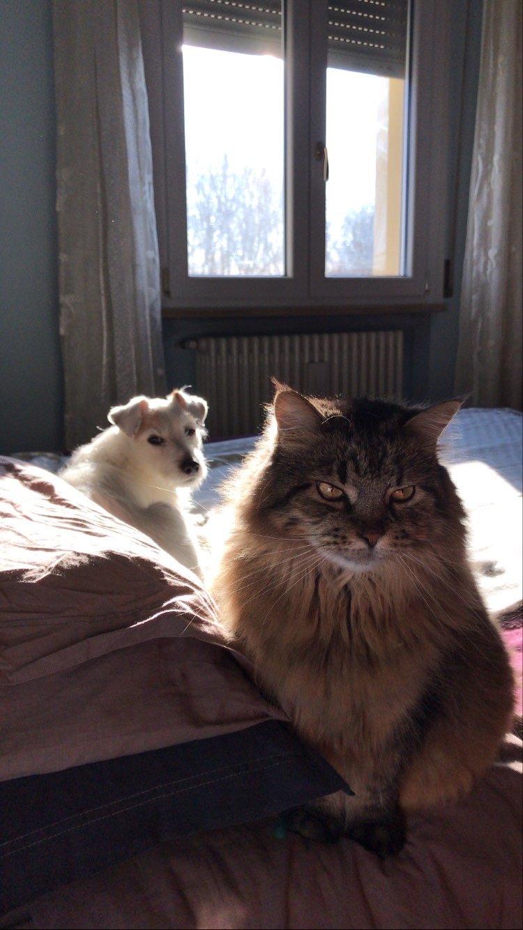 Bianca e Violetta